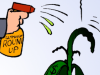 Bayer Monsanto Glyphosat Roundup Krebs Krebserkrankung Gift Krankheiten Pestizide USA Gerichtsurteil Fusion EU Deutschland Europäische Union CDU Christian Schmidt Aktie Börse