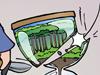 Umweltschutz Umweltbudget Brasilien Bolsenaro Artensterben Klimawandel Klimaschutz Naturschutz Biodiversität Regenwald Dschungel Tiere Pflanzen Naturvölker Amazonas Gold Eisen Bauxit TÜV